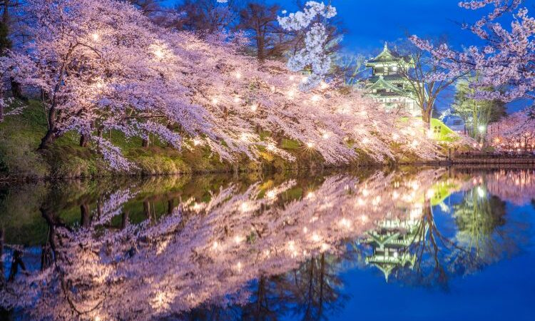 Японский парк Такада в ожидании Фестиваля цветущей вишни