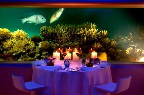 Ресторан Latitude 4° на Мальдивах: вид на подводную вселенную