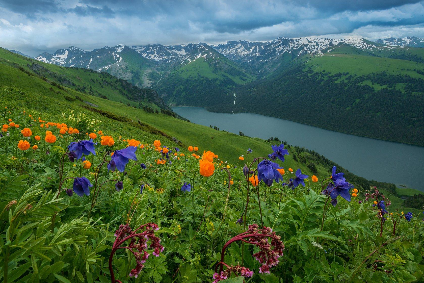 В России стартовал фестиваль «Дни заповедных территорий»