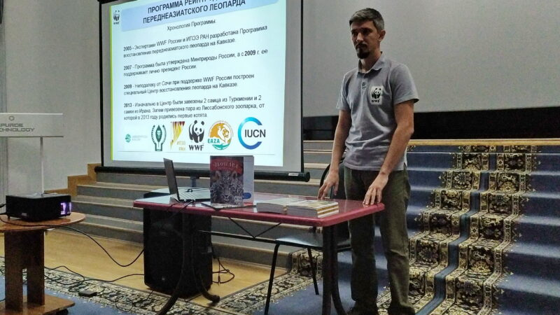 Сотрудники WWF и Кавказского заповедника регулярно проводят встречи по переднеазиатскому леопарду